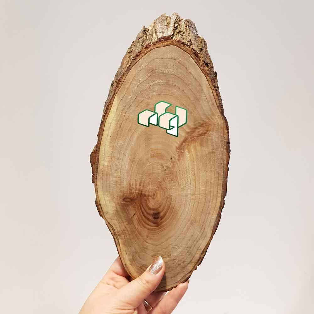 تنه درخت اسلایسی کیلرخورده
