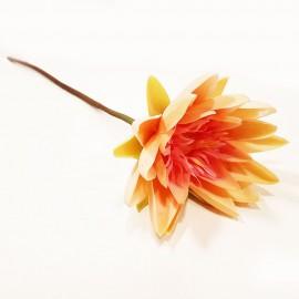 گل مرداب شاخه ای