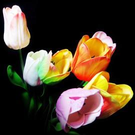 گل لاله لمسی..