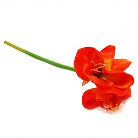 گل آماریلیس لمسی