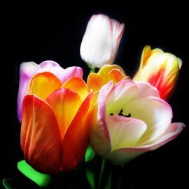 گل لاله لمسی