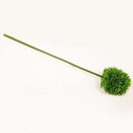 گل توپی لمسی
