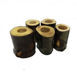 جای خلال دندان چوبی تنه درخت